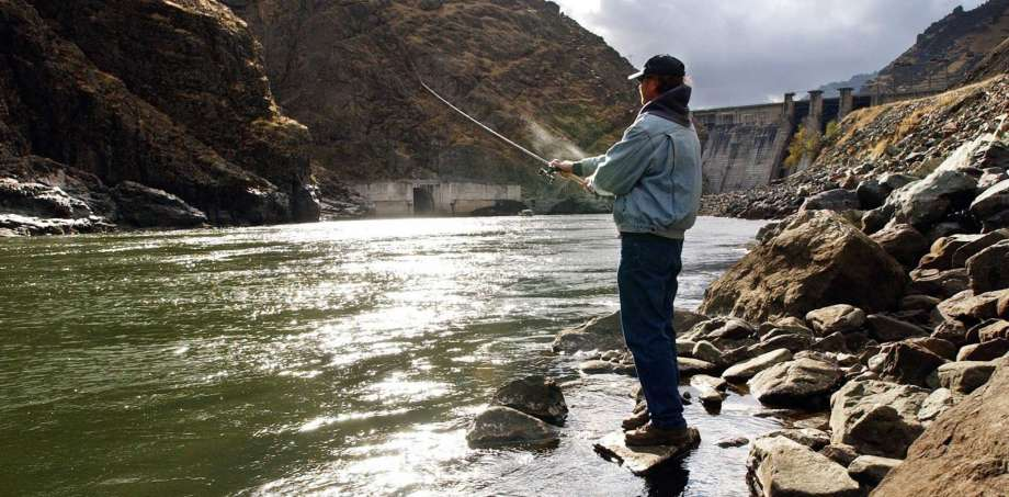 Fisherman Larry McBrom works along the Snake River shoreline below Hells Canyon Dam in southwestern Idaho. Authorities have released recovery plans for federally protected Snake River chinook salmon and steelhead with the goal of making sure each species is self-sustaining in the wild. (Darin Oswald/The Idaho Statesman via AP, File)