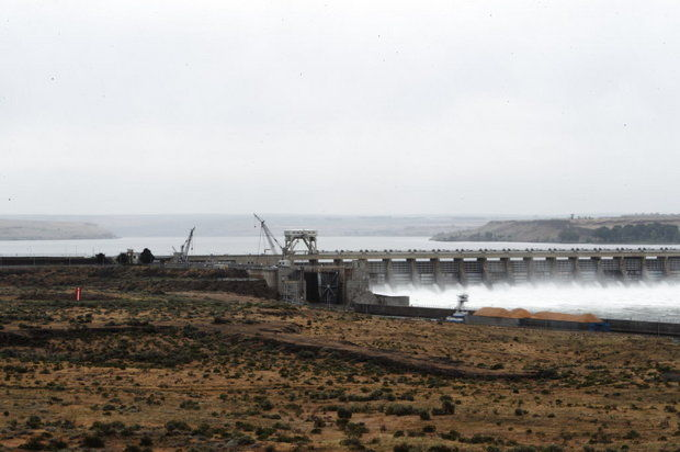 McNary Dam spills water over spillway during the spring runoff.