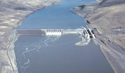 Little Goose Dam, one of the supposed culprits contributing to the decline of Steelhead and Salmon in the Snake River.