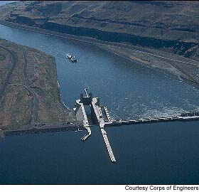 Lower Mounumental Dam in the southeast corner of Washington on the Snake River.